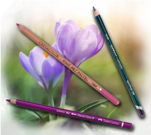 Pencils4artists Colour Compare Set of 12 Purples